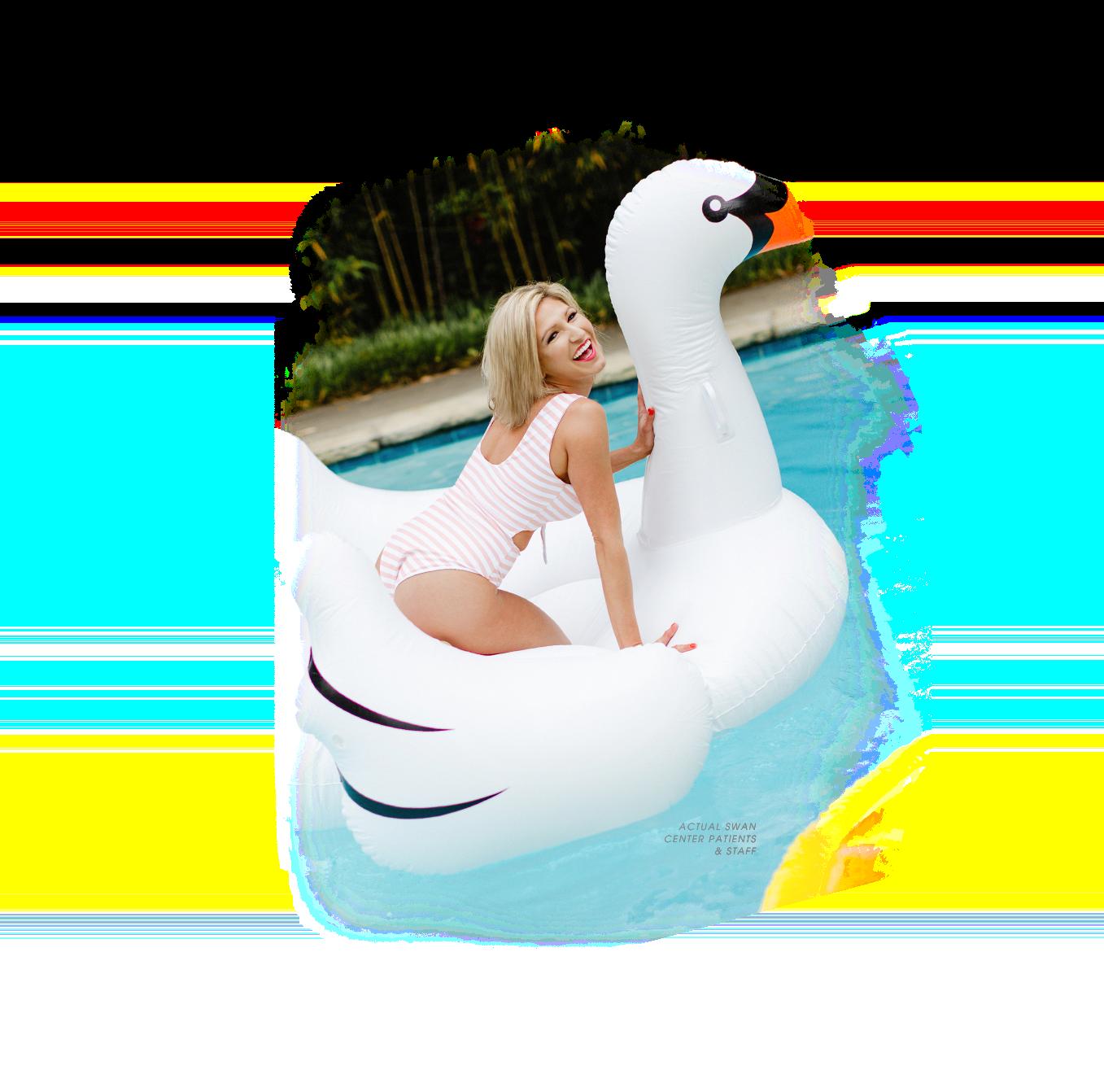 swan center model